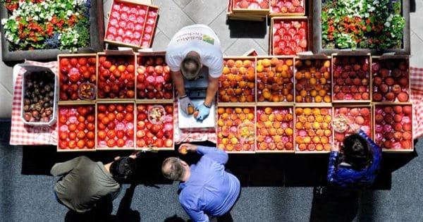 Фермеры ЕС страдают из-за санкций