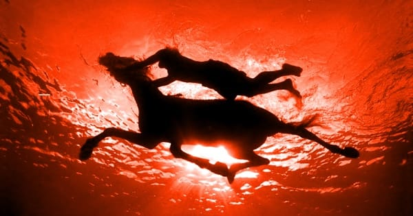 Коней на переправе не меняют