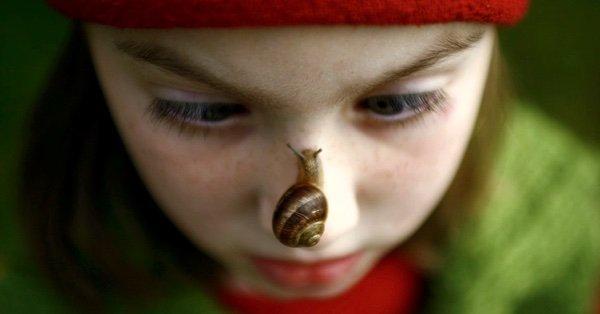 как правильно вылечить паразитов у детей