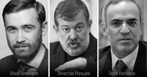 Илья Пономарёв, Владимир Мальцев, Гарри Каспаров, политики